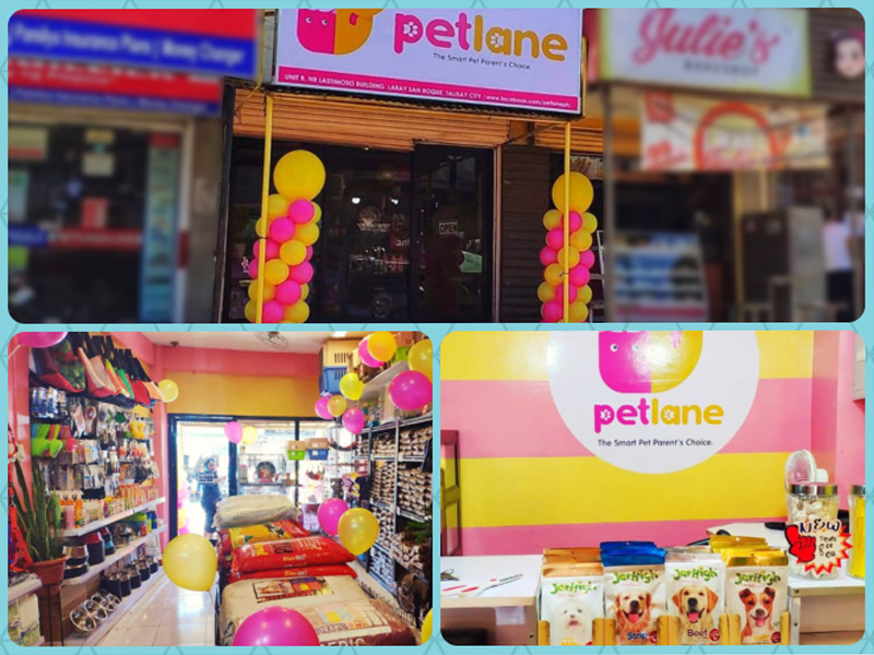 pet lane pet supplies talisay cebu