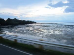 scene roadside