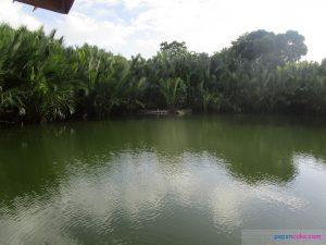 punong lake samboan